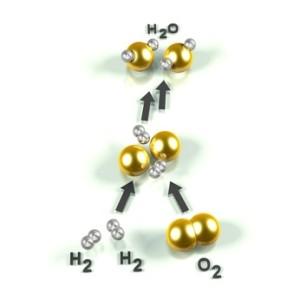 Brennstoffzelle: chemisches Modell